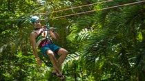 Ocho Rios Shore Excursion: Rainforest Adventures Sky Explorer and Zipline at Mystic Mountain