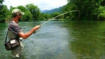 Fishing on rivers, lakes and sea in Montenegro