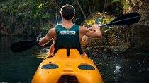 Xenotes Oasis Maya: Cenotes Adventure from Playa del Carmen, Playa del Carmen