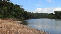 Expedition zum Tambopata National Reserve