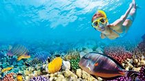 Key West Tour and Coral Reef Snorkeling Tickets
