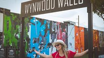 Miami: Wynwood Walls, Taco and Craft Beer Walking Tour (Small Group) Tickets