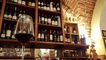 Milan Wine Tasting Experience Tickets