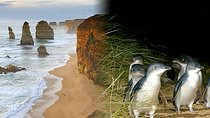 Melbourne Super Saver: Great Ocean Road and Phillip Island Tickets