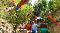 Priority Access: Xcaret Day Trip from Playa del Carmen, Playa del Carmen