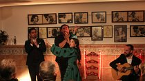 Flamenco Immersion - Small group and tapas dinner included