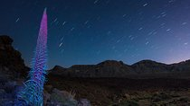 Teide Night Experience with Dinner and Stargazing Tickets