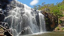 Grampians National Park Small-Group Eco Tour from Melbourne Tickets