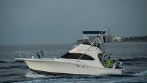 GettinFishy Sportfishing, Dock & Dine, Scenic Cruises & More!