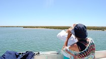 Bird Watching Guided Boat Trip in Ria Formosa from Faro Algarve Tickets