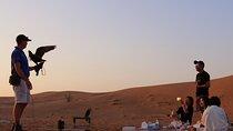 Sunrise Desert Safari with Falcon show & Picnic Breakfast Tickets