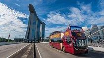 Big Bus Singapore Hop-On Hop-Off Tour (6 Routes) Tickets