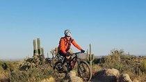 Private Solo Sonoran Half Day Desert Mountain Bike Adventure