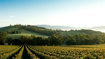 Yarra Valley Wine & Food Day Tour from Melbourne with lunch at Yering Station Tickets