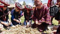 Erlebnistourismus In Cusco – Urubamba – Chinchero