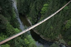 Capilano Suspension Bridge Park Admission with Free Shuttle
