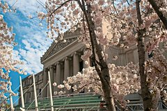 Imagen Brooklyn Museum General Admission