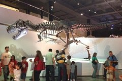 Houston Texas Houston Museum of Natural Science General Admission 40629P1
