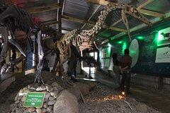 Imagen Visita al Museo de Historia de El Calafate