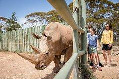 Imagen Rhino Interactive and a day at Monarto Zoo