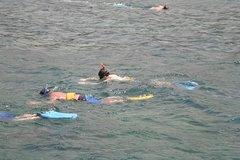 Montego Bay Shore Excursion: Private Snorkel Tour