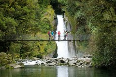 Imagen Half-Day Milford Track Guided Hiking Tour