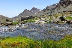 Sierra Nevada Full-Day Hiking Tour from Granada
