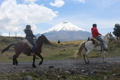 Imagen Cotopaxi Volcano Horseback Ride Excursion from Quito