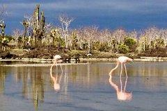 Imagen 4 Day Galápagos en San Cristobal Island Land Tour