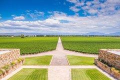 Imagen Recorrido vinícola privado en Luján de Cuyo desde Mendoza