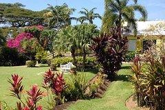 Imagen Visite de la moitié de l'île de Saint-Christophe