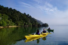 Imagen Full day Guided Sea Kayak Tour from Picton