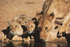 24-Day South East Adventure Camping Tour from Nairobi