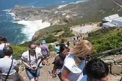 Best of the Cape tour
