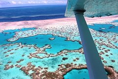 Excursions,Multi-day excursions,Excursion to Great Barrier Reef,Excursion to Kuranda,Excursion to Daintree Rainforest