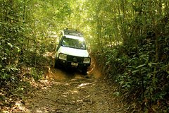 Imagen Barron Gorge and Kuranda National Park Half Day Rainforest and Waterfall 4WD Tour from Cairns