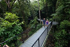 Imagen 4-Day Cairns with Great Barrier Reef and Daintree Rainforest