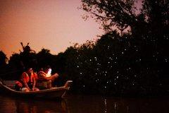 Imagen Kuala Selangor Fireflies Tour From Kuala Lumpur
