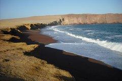 Imagen Ballestas Islands and Paracas National Reserve Day Trip from Paracas