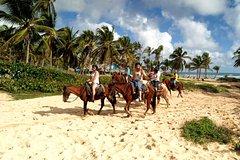 Actividades,Actividades de aventura,Salidas a la naturaleza,Paseo en caballo