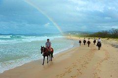 Imagen Rainbow Beach Horse Ride