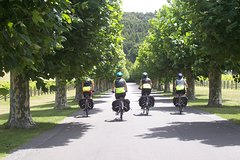 Imagen Half-Day Self-Guided Hawkes Bay Coastline and Wineries Cycling Tour