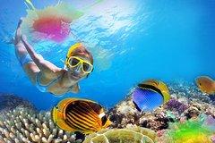 Activities,Activities,Activities,Water activities,Water activities,Adventure activities,Nature excursions,Sports,Sports,Adventure: ATV, snorkeling, diving...