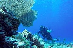 Activities,Activities,Activities,Water activities,Water activities,Adventure activities,Adrenalin rush,Sports,Sports,Adventure: ATV, snorkeling, diving...