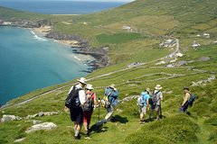 Dingle Kerry Dingle Peninsula Hike - 8 Day Self-Guided Tour 12489P22