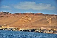 Imagen Ballestas Islands and Paracas Reserve from San Martin Port