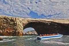 Imagen Ballestas Islands Group Tour from San Martin Port