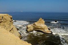 Imagen Half-Day Tour of Paracas National Reserve from San Martin Port