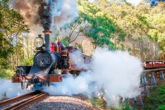 Imagen Puffing Billy and Mount Dandenong Private Tour