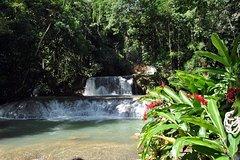 Adventure Tour - Waterfalls Crocodiles Appleton Rum Tasting Pelican Bar